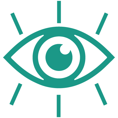 MEEP-Icons-Vision Services