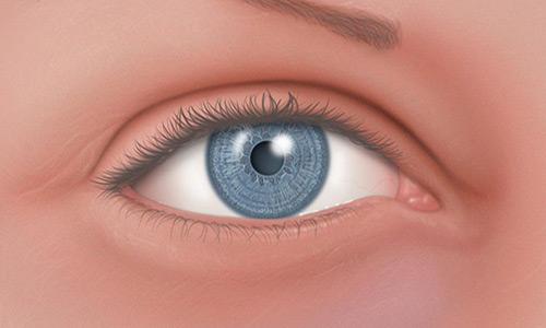 Normal_Eye_01